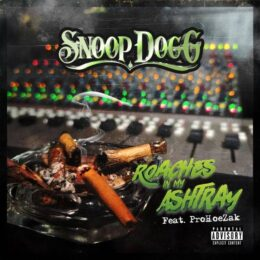 دانلود آهنگ Roaches In My Ashtray از Snoop Dogg